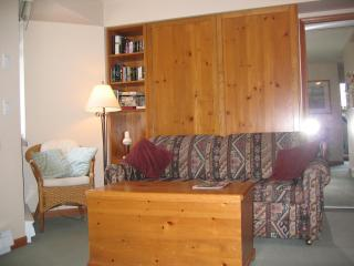 Lagoons 37 pet-friendly studio in Whistler - Whistler vacation rentals