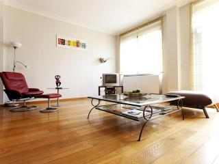 Gorgeous Apartment in loft style Avenue Louise - Brussels vacation rentals