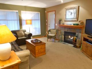 Northstar 121 1 bdrm pet-friendly Whistler condo - Whistler vacation rentals