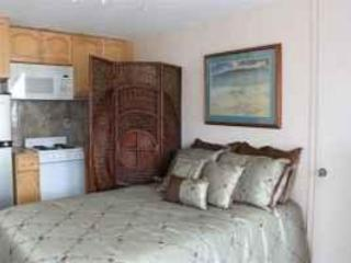 Beautiful 2 Blks to Waikiki Beach Central Location - Waikiki vacation rentals