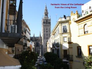 THE HOUSE OF ANTIQUARIAN - Seville vacation rentals