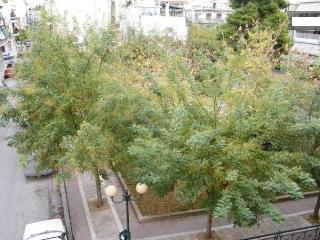 Athens in old historic neighborhood - Athens vacation rentals