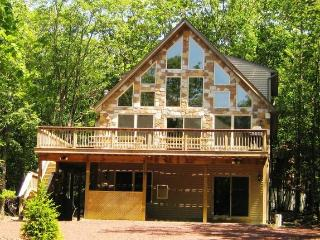 Coyote Lodge - Lake Harmony vacation rentals