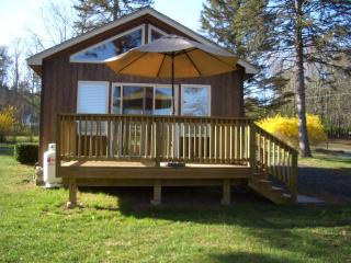 DreamCatcher Cottage, Mtn Views - romantic setting - Catskills vacation rentals