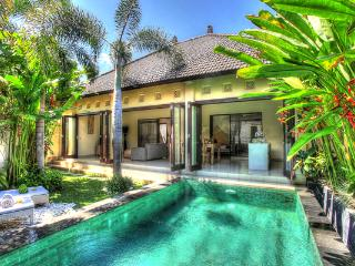 NICE COZY VILLA 2 BEDROOMS SEMINYAK VERY SAFE AREA - Seminyak vacation rentals