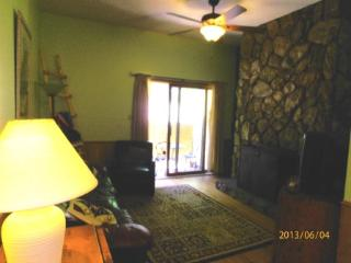 Gold Creek #204 - Angel Fire vacation rentals