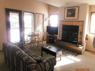 Ski Run A10 - Angel Fire vacation rentals