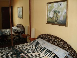 Sunshine - Kiev vacation rentals