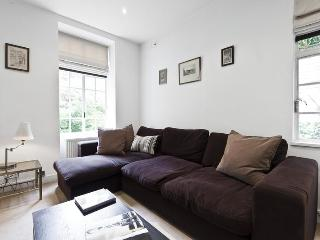 Great Peter Street - London vacation rentals