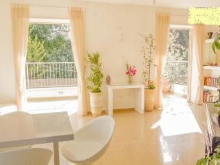 Luxury 3br+spacious terrace,walk distance old city - Jerusalem vacation rentals