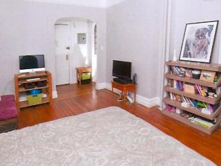 Chic Apartment in Harlem - New York City vacation rentals