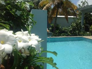 Garden House -  garden district, sexy pool, porches - Vieques vacation rentals