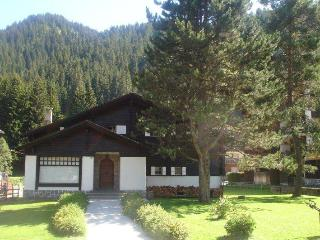 12  bed chalet in Morgins Portes du Soleil - Morgins vacation rentals