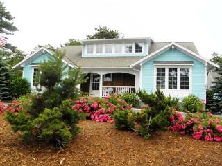 256 HERRING BROOK ROAD - Brewster vacation rentals