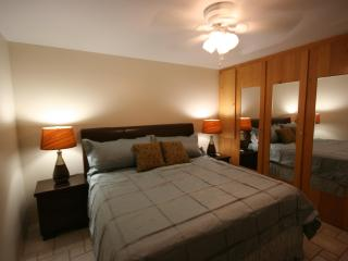 Summer Special $99/night Luxury King Memory Foam Condo only 500 steps from Charley Young Beach - Maui vacation rentals