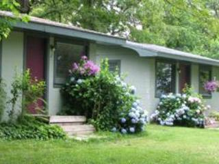 Lakeside Cabins #1-6  - Green Valley Resort - Branson West vacation rentals