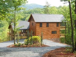 Views National Forest,Mountain Views Year Round, 2 mi to Blue Ridge Lake 3/3 - Blairsville vacation rentals
