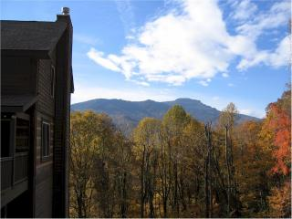 Shadow Mountain Cabin/ Hot Tub/ Mountain View - Banner Elk vacation rentals