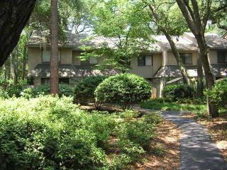 Quiet Plantation-Like Setting, 300 Yards to Beach - Hilton Head vacation rentals