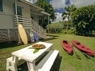 Large Hawaiian House - Mango Hale - Lihue vacation rentals
