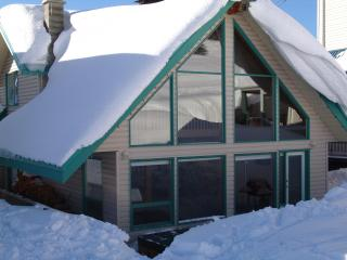 Affordable Ski in Ski Out sleeps 16 - Silver Star Mountain vacation rentals