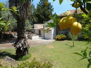 Unique and perfectly peaceful setting on the coast - Santa Tecla vacation rentals