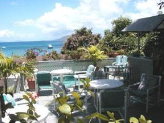 Lighthouse Villas Terrace Deluxe Suite - Image 1 - Tortola - rentals