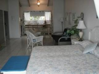 Lighthouse Villas Palm Tree Suite - Tortola vacation rentals