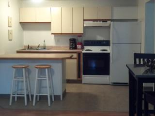 2 bedroom apartment ideally located in Fairbanks - Fairbanks vacation rentals
