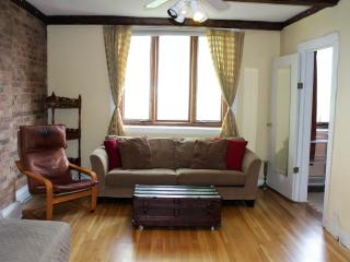 Trifecta!  2 Bedroom Best Location in Lincoln Park - Chicago vacation rentals