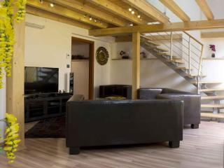 Attic Olivova II - Luxury four bedroom apartment - Prague vacation rentals