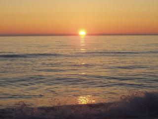Beautiful sunsets to end each day! - Bella Beach Vacation Rentals