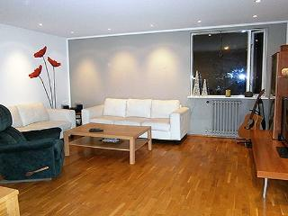 West Side Apartment - Reykjavik vacation rentals