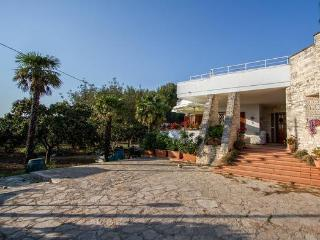 Rooms in a nice villa near Lecce: B&B Il Gelso - Monteroni di Lecce vacation rentals