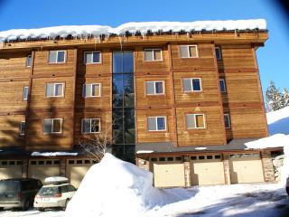 Prime Penthouse Condo at Whitefish Mountain Resort - Whitefish vacation rentals