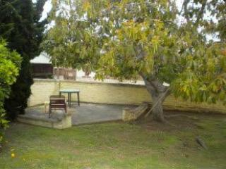 Spacious yard with avocado tree - Beaumont Beach House - La Jolla - rentals