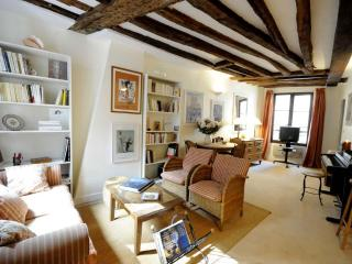 An Exclusive Gem at Notre Dame - Rome vacation rentals