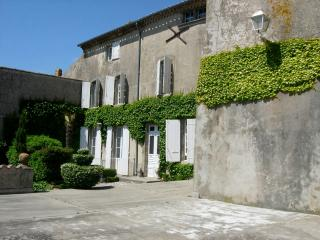 Historic Chateau in Southern France near Carcassonne - Chateau Aude - Carcassonne vacation rentals