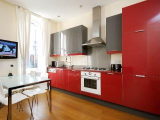 HOLBORN SWIMGYM FLAT1 GARDEN 2bed2bath in the famous West End - London vacation rentals