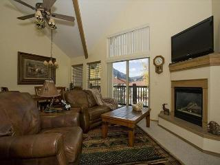TLA10 Ideal Condo w/Wifi, Common Hot Tub, Mountain Views, Fireplace, King Bed - Frisco vacation rentals