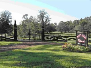 Sunrise View 3/2 Guest Home on Working Dude Ranch - Dunnellon vacation rentals