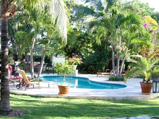 A Fig Tree - Harbour Island vacation rentals