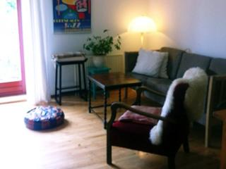 Nice Copenhagen apartment at Noerreport metro - Copenhagen vacation rentals