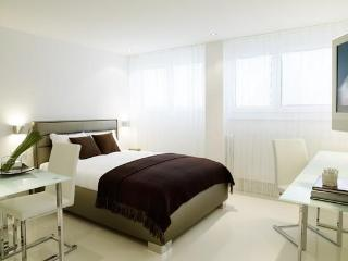 Serviced JUNIOR APARTMENT - Zurich Region vacation rentals