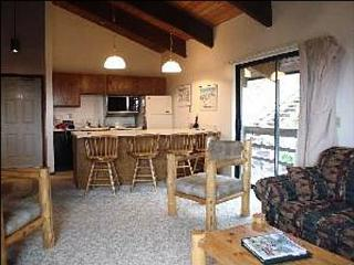 Great Mountain Views - 5 Minutes from the Slopes (1025) - Crested Butte vacation rentals