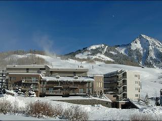 Beautiful Gateway Condominium Unit - Easy Access to Several Lifts (1154) - Crested Butte vacation rentals