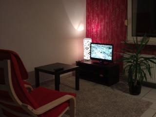 Vacation Apartment in Duisburg - 614 sqft, warm, comfortable, friendly (# 3046) - North Rhine-Westphalia vacation rentals