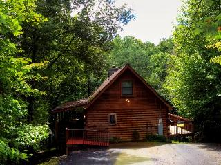 55 - Pigeon Forge vacation rentals