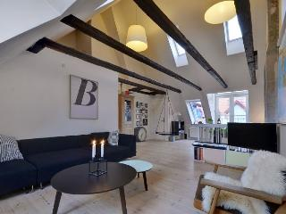 Copenhagen apartment at trendy Islands Brygge - Copenhagen vacation rentals
