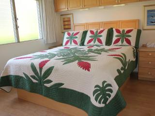 Oceanview 200 Steps from Beach Snorkeling/Swimming - Maui vacation rentals